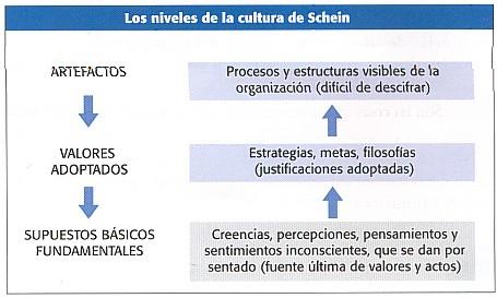 Niveles de la cultura según Schein